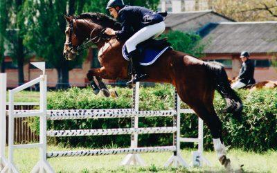 Monter à cheval en toute sécurité avec un gilet de protection.