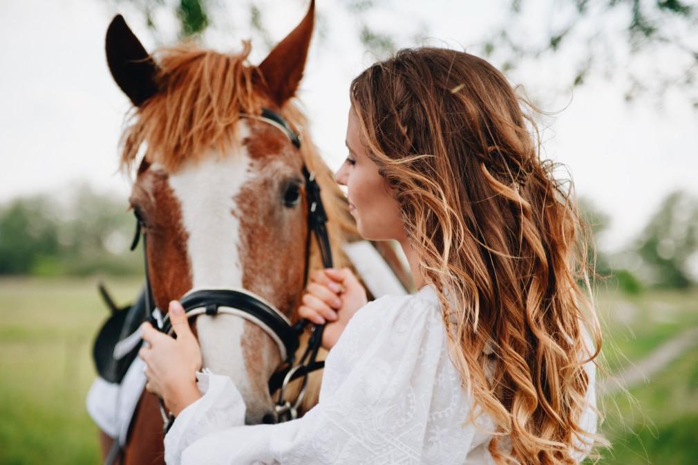 Surveillez vos chevaux avec une caméra sans fil